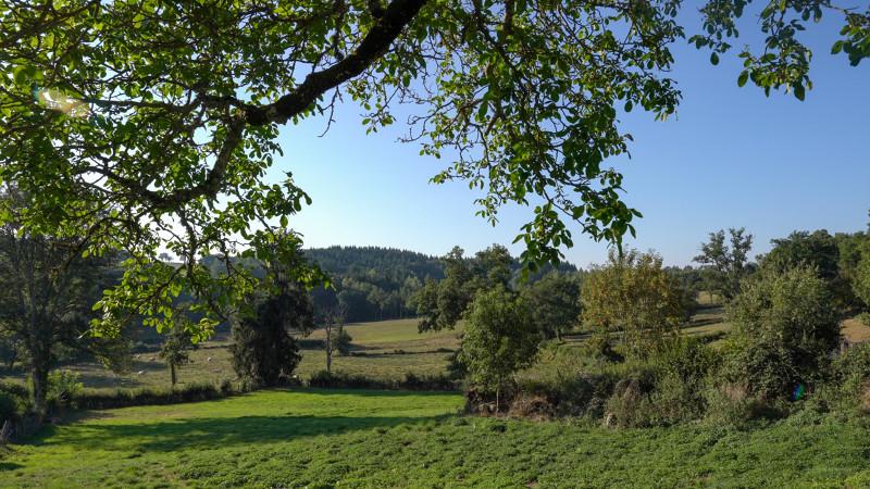 Paysage de Creuse - Plateau de Millevaches